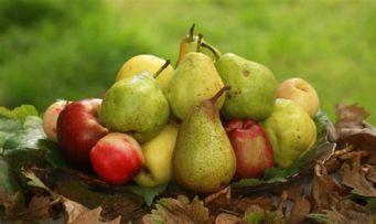 mele e pere
